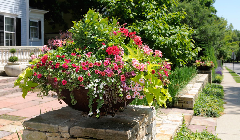 Container garden service